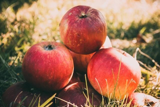 子供のために焼く、アップルパイ、マミーズ・アン・スリール