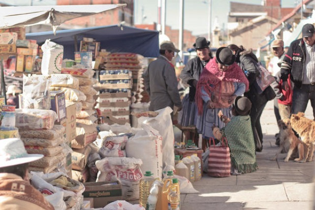 トメアス、ボリビア、移民、新しい生活、日本人村