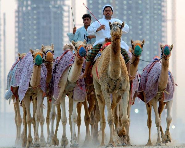 アラブ首長国連邦、ドバイ、空港、バージ・アル・アラブ・ホテル、高級