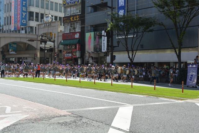 熊本。馬追い祭り、衝撃的、馬がお酒を飲む