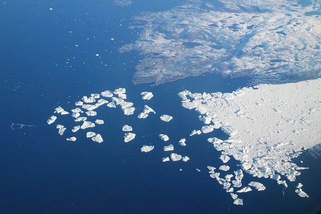 鯨の中から科学廃棄物、カリフォルニア州、プラスティックバック廃止