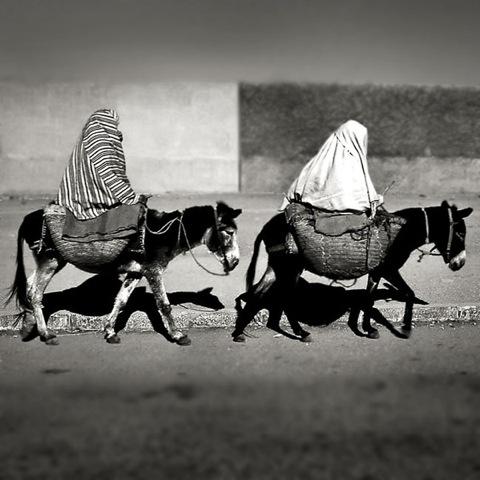 モロッコ、ムッセム、イスラム結婚式、お祭り