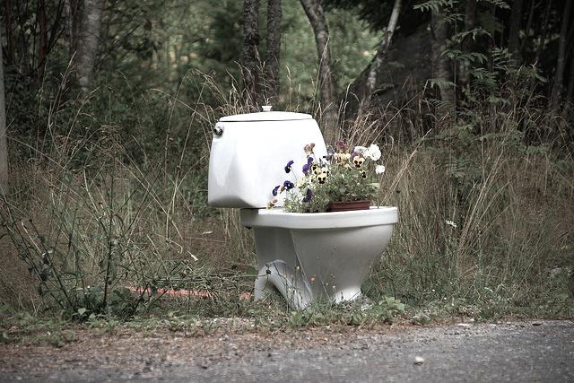 旅で見た海外のトイレ、日本は寝れるくらい清潔