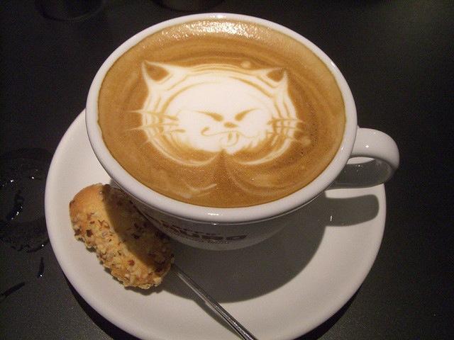 猫カフェ、ロンドン、パリ、ニューヨーク、開店、猫の保護、里親