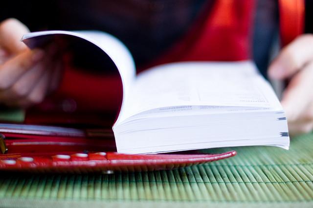 世界の旅行者、持ち物、本