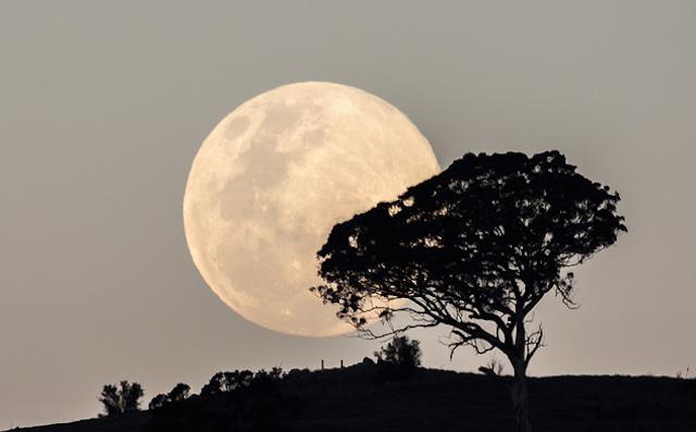 2015年はたった一度、スーパームーン、月のパワー、体の中から浄化