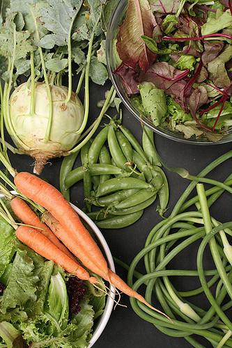イタリアン、フレンチ、お馴染み、野菜、コールラビ、魅力