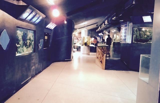 エカマイ、科学博物館、プラネタリウム、子供の遊び場