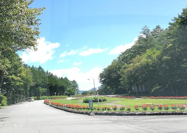 北軽井沢、親子、楽しむ、アクティビティスポット、4選